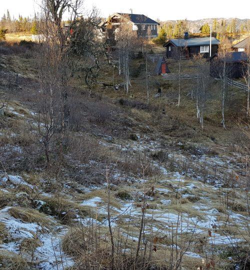 Vurdering av avløpsløsninger for 6 nye hytter i Sør-Aurdal