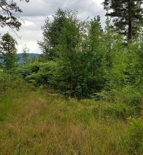 Nytt infiltrasjonsanlegg for gammel tømmerbolig fra 1800-tallet ved Lillestrøm.
