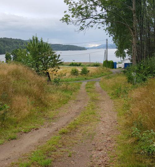 Prosjektering av nytt renseanlegg for 11 kolonihagehytter på Rørvik ved Drammensforden