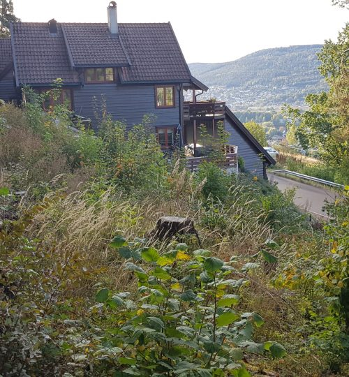 Vurdering av overvannsproblematikk for prosjekterte terrasseleiligheter i Drammen